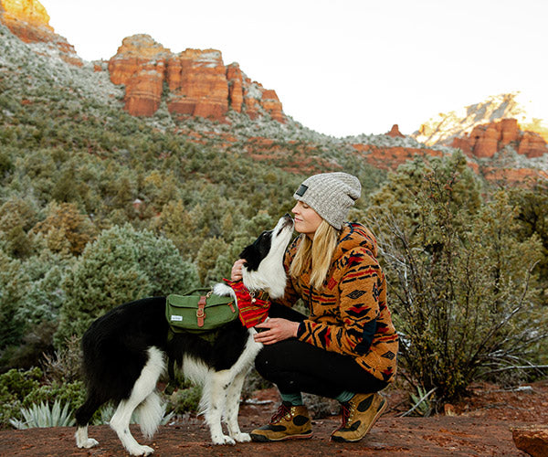 dog hiking in sedona with backpack