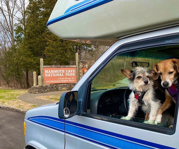 Dog-friendly Mammoth Cave National Park