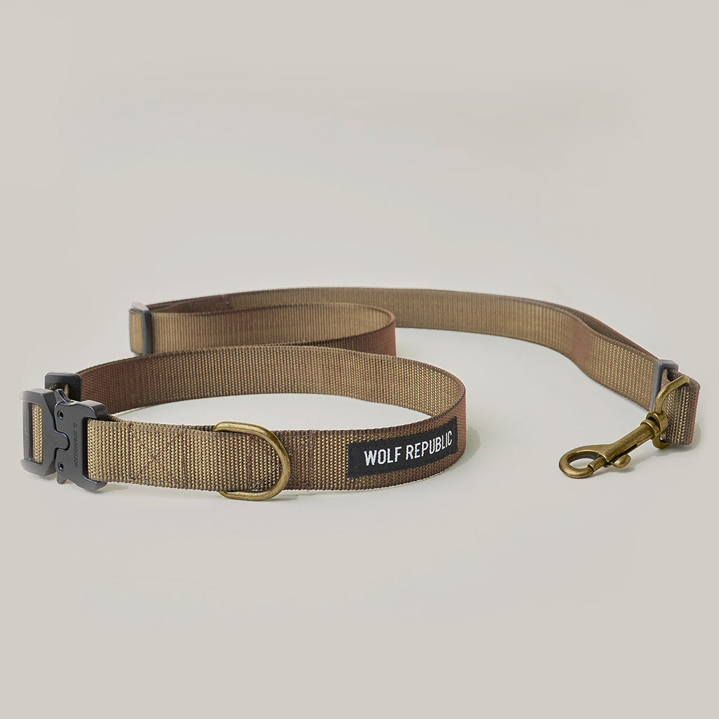 Scout Leash