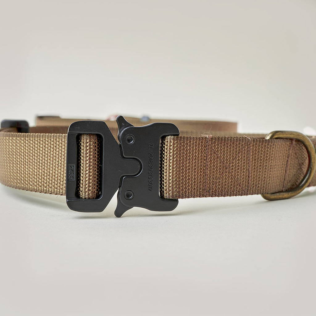 Scout Collar