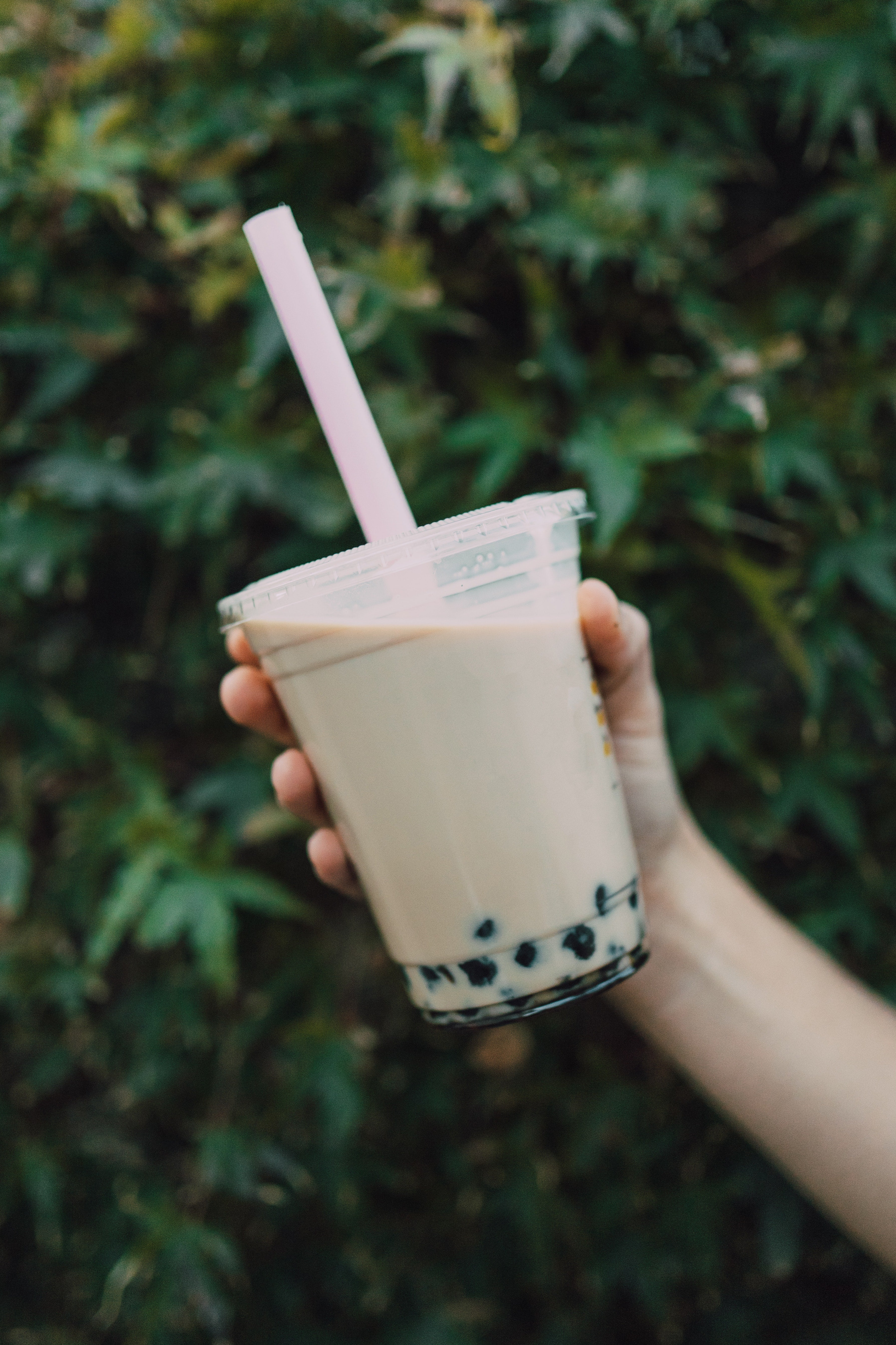 hand holding a cup filled with boba tea in a green leafy background
