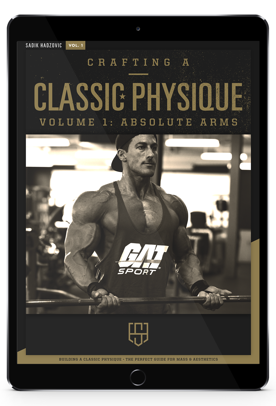 Vol 1: Absolute Arms eBook