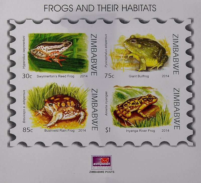 Frogs and their habitats mini sheets