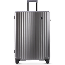 Conwood Globus 75cm Trolley Case Silver