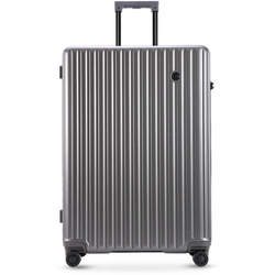 Conwood Globus 65cm Trolley Case Silver