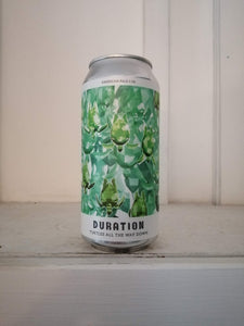 Duration Turtles All The Way Down 5.5% (440ml can)