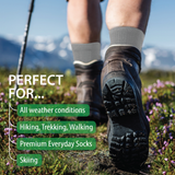 Merino Wool Hiking Socks (Grey) (1 pair)