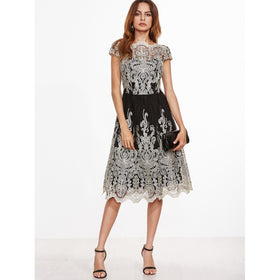 Contrast Fit And Flare Embroidered Mesh Dress