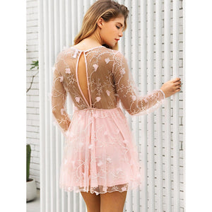 Embroidery Sheer Mesh Dress