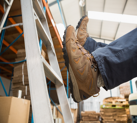 Ladder Safety Distance Learning (CPD)