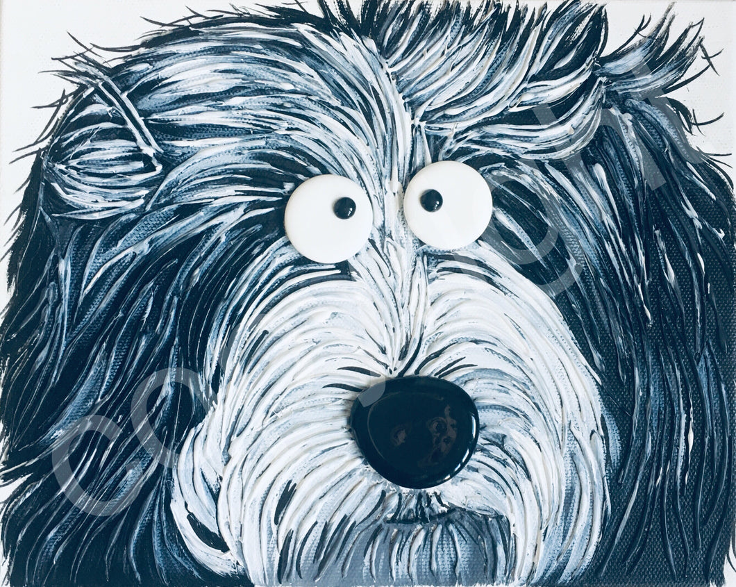 """Bashful Bearded Collie"" original art canvas"