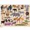 Challenge your kids to put together this 100 piece, beautiful wild animal jigsaw from Bertoy! Complete the puzzle to create images of beautiful wild animals like an Elephant, Lion, Giraffe and many more!