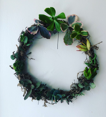 Workshop - Build Your Own Succulent Christmas Wreath