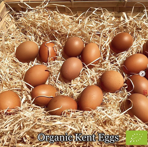 Tray of 30 organic eggs