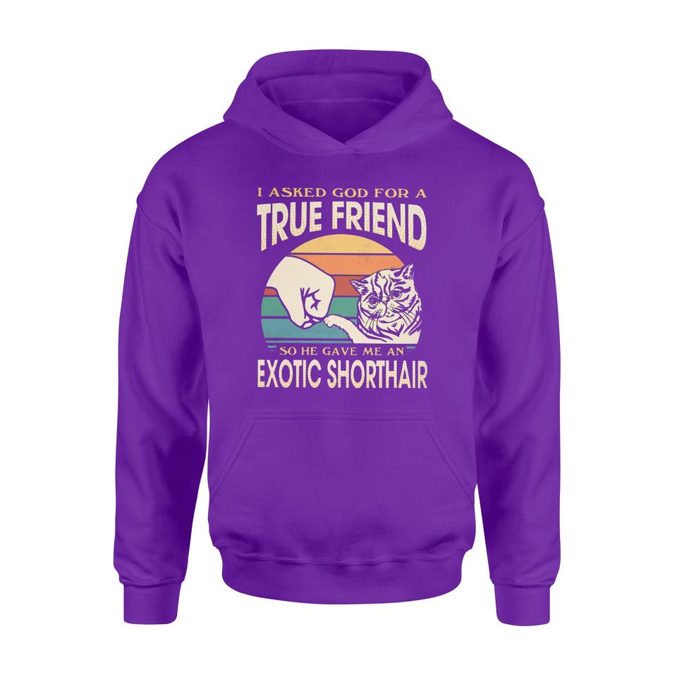 I asked God for a True Friend so he gave me an Exotic Shorthair - Standard Hoodie