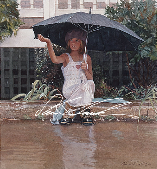 Steve Hanks - Catching the Rain