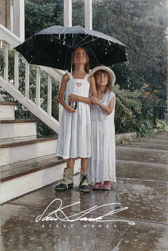 Steve Hanks - Shelter for the Heart