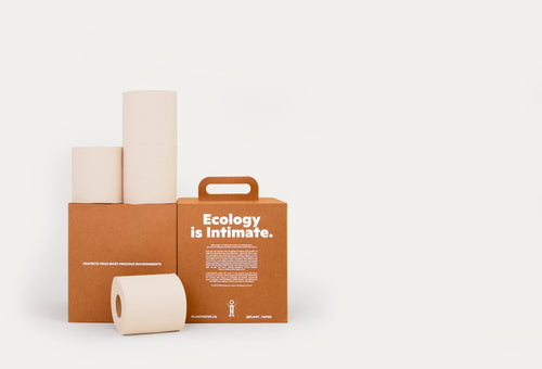 Two boxes, one with a handle that reads Ecology is Intimate. Toilet paper rolls stacked around the boxes
