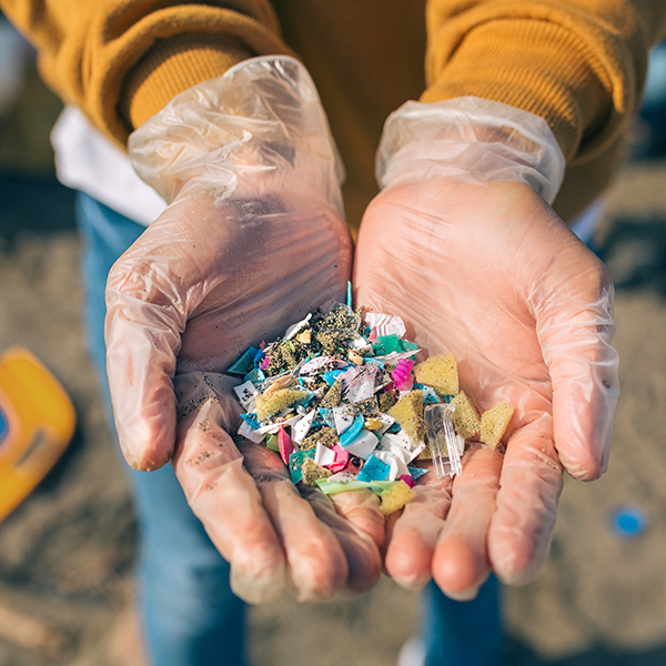 Gloved hands showing microplastics on the beach