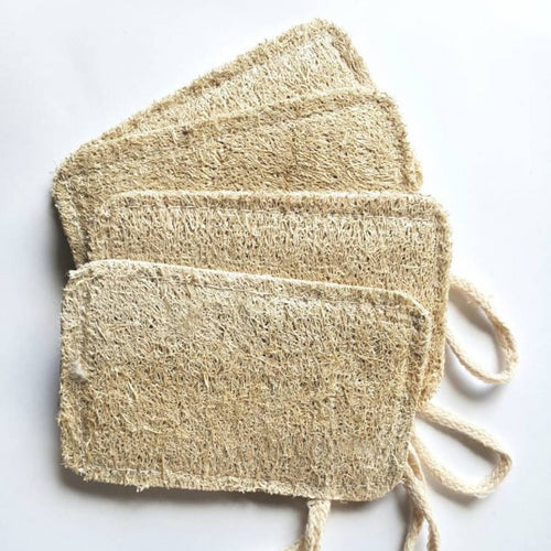 4 flattened natural loofahs in sponge shapes each with a loop for hanging
