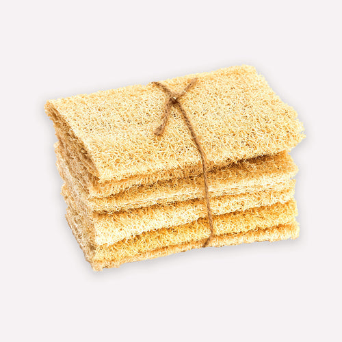 6 flattened natural loofah sponges stacked and tied with twine.