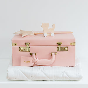 Large Memory Case in Blush Pink (Delivery w/c 18th February) | Meminio Memory Cases