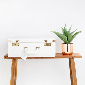 Large Memory Case in Ivory White