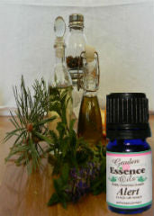 Alert aromatherapy blend by Garden Essence                       Oils used for low energy, shock, get the brain                       working