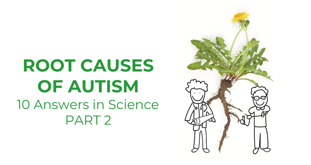 Root Causes of Autism Part 2
