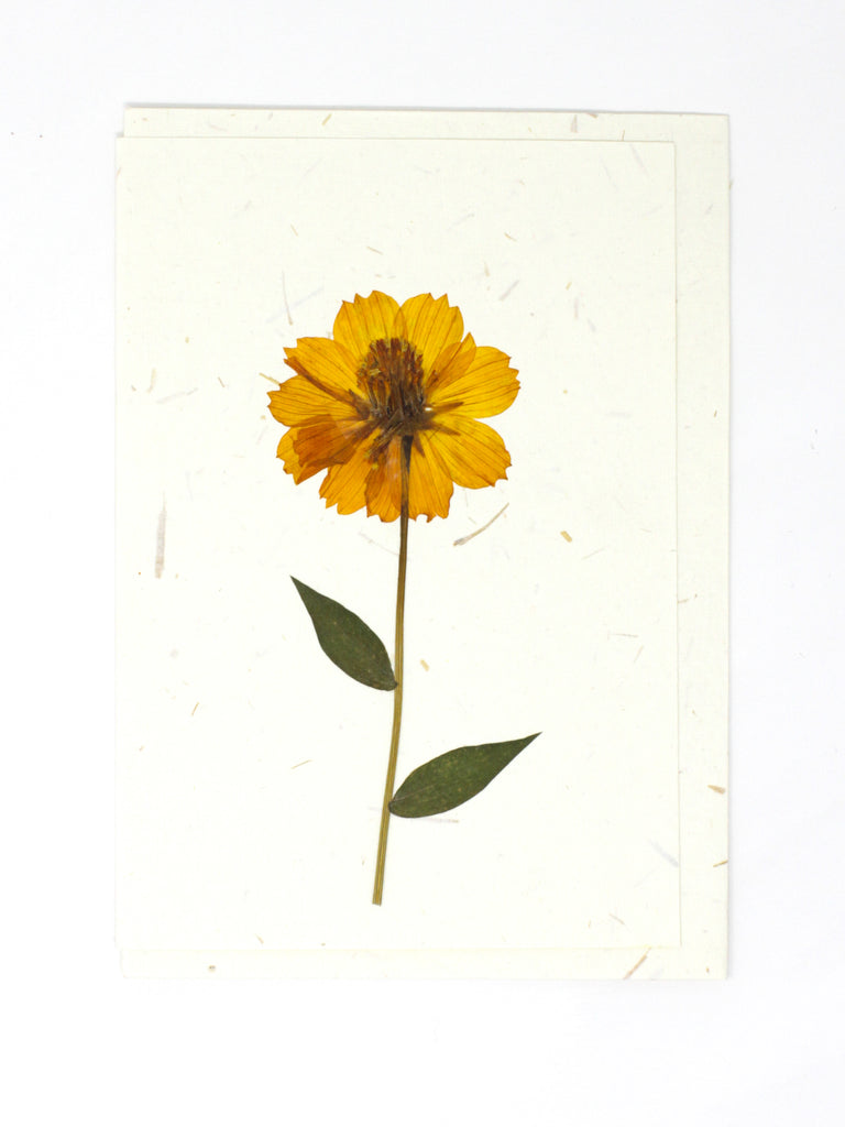 Sunflower Pressed Flower Card
