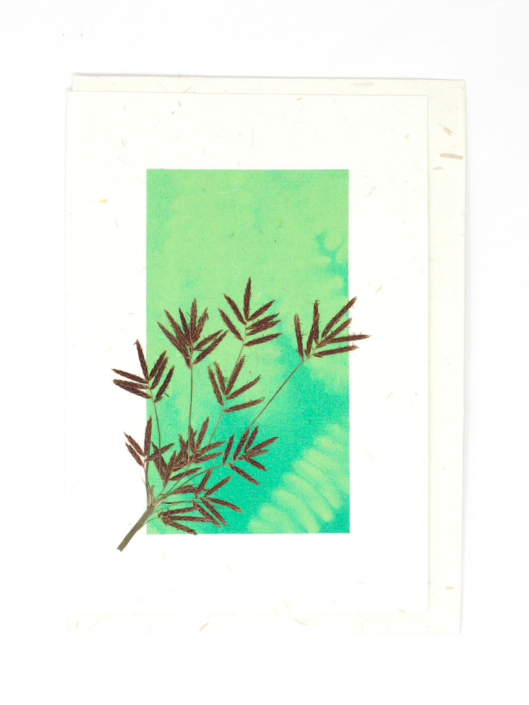 Elements Pressed Flower Card - Bud Green