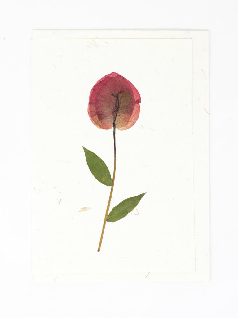 Petal Pressed Flower Card