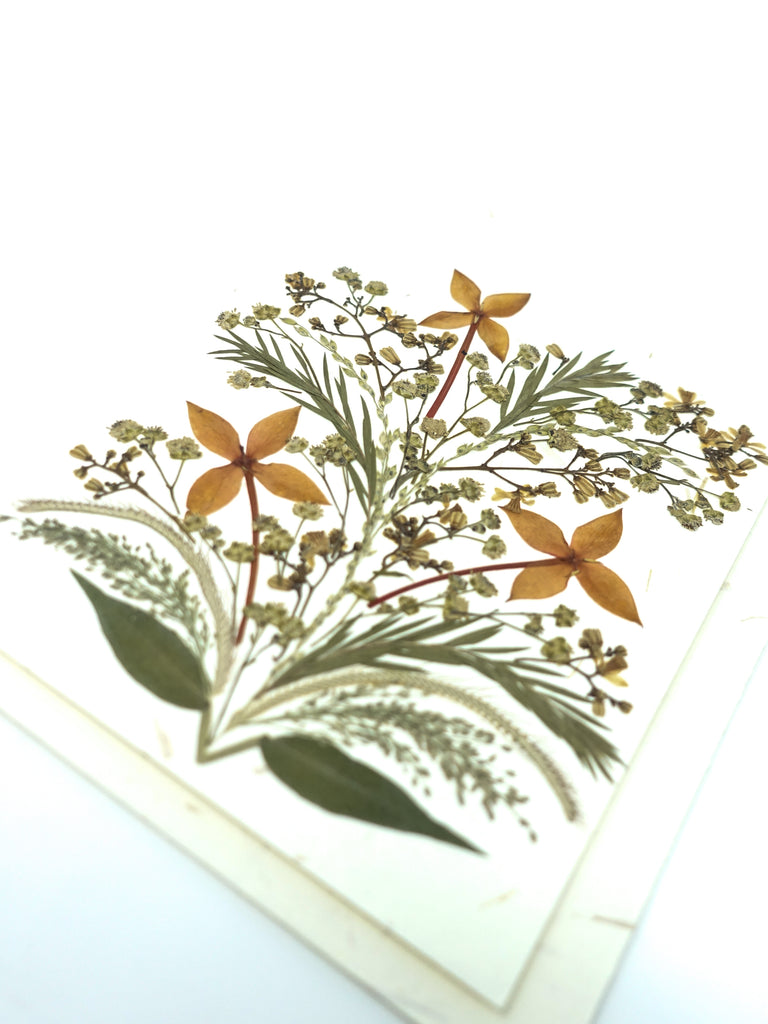 Bloom Pressed Flower Card - Daffodil