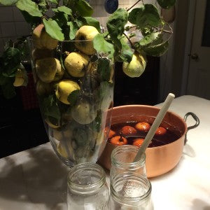 QUINCES, A DELIGHT FOR ALL SENSES