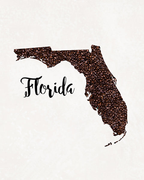 FLORIDA State Map Art