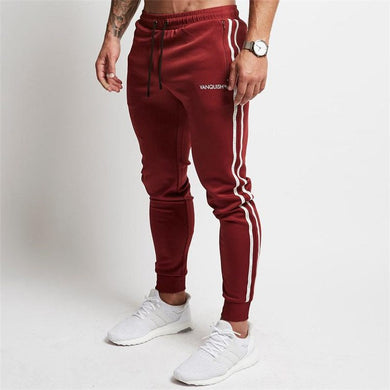 Burgundy Fitted Striped Jogger Pants