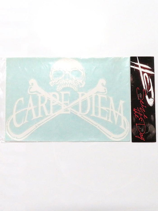 Carpe Diem Pirate Skull Bumper Decal Sticker 10x7 White