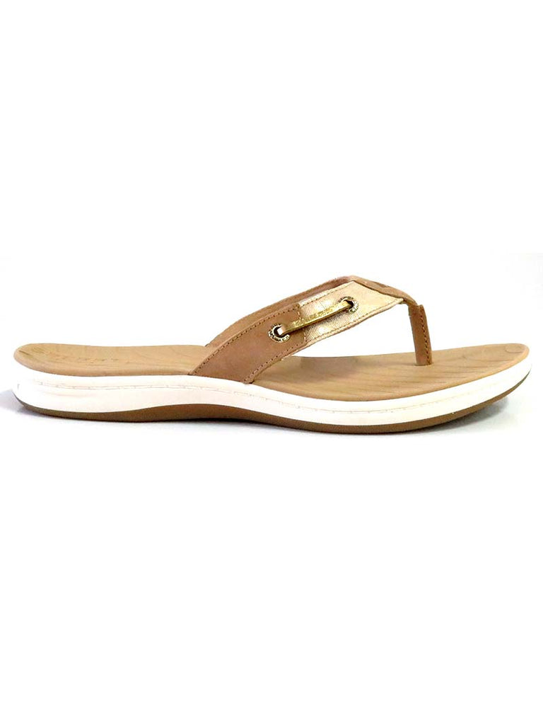 Sperry Womens Seabrook Surf Metallic Sandals STS81815