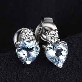 Shimmering Heart Shaped Earrings