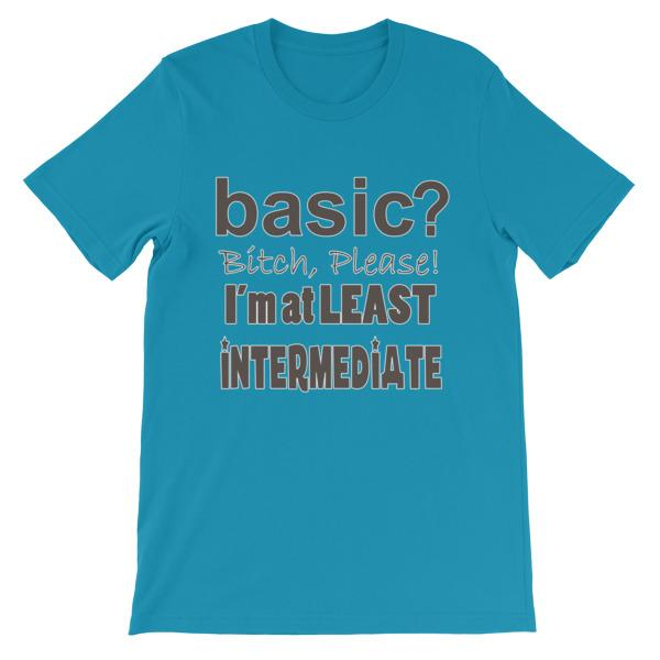 Basic Bitch Please I'm at Least Intermediate T-Shirt-Aqua-S-Awkward T-Shirts