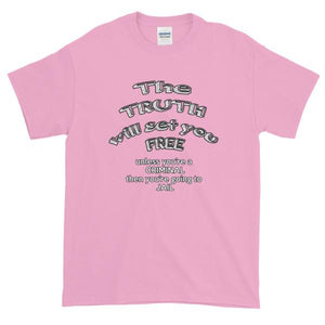 The Truth Will Set You Free Unless You're a Criminal T-Shirt-Light Pink-S-Awkward T-Shirts