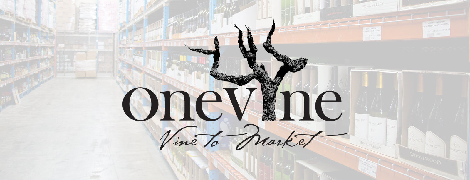 exclusive distributor of new wine brands