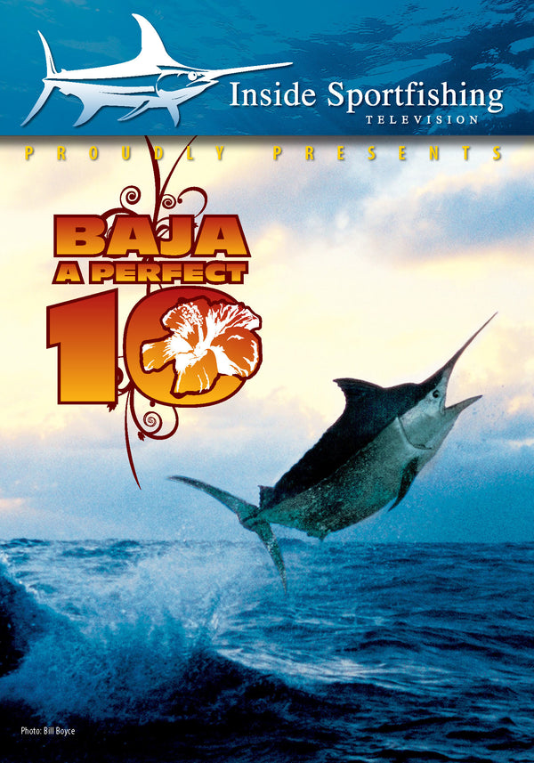 Inside Sportfishing Baja: A Perfect 10