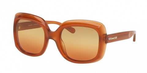Coach 8194F Sunglasses