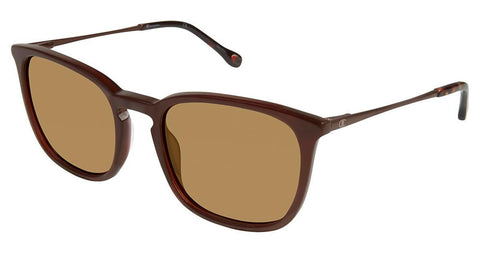 Champion CU6039 Sunglasses
