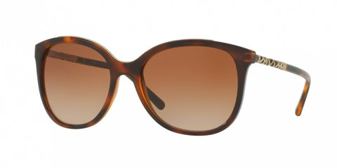 Burberry 4237 Sunglasses