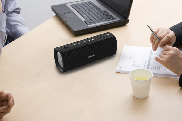 NTS30 Wireless Portable TWS Speaker