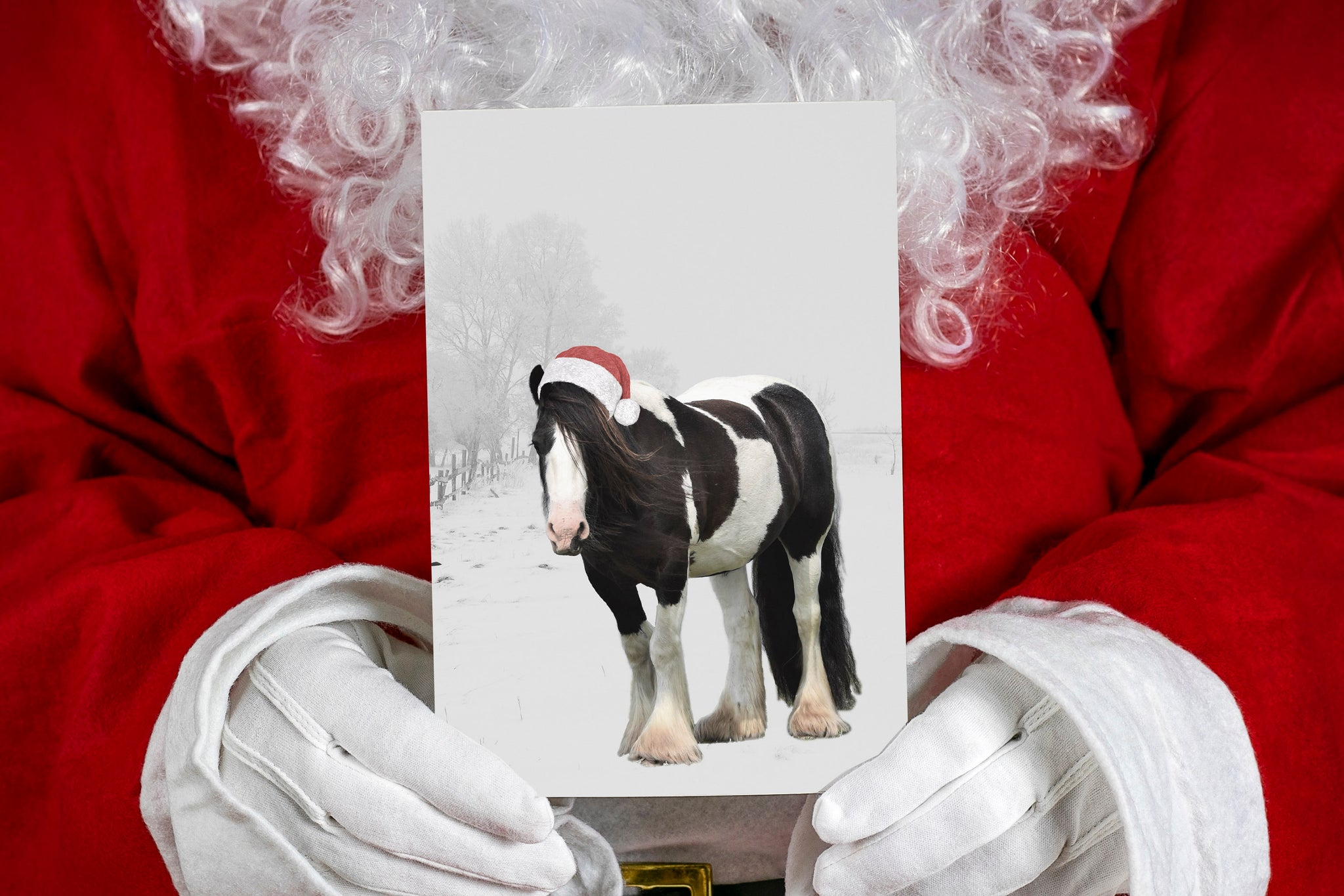 Gypsy Vanner Christmas Card