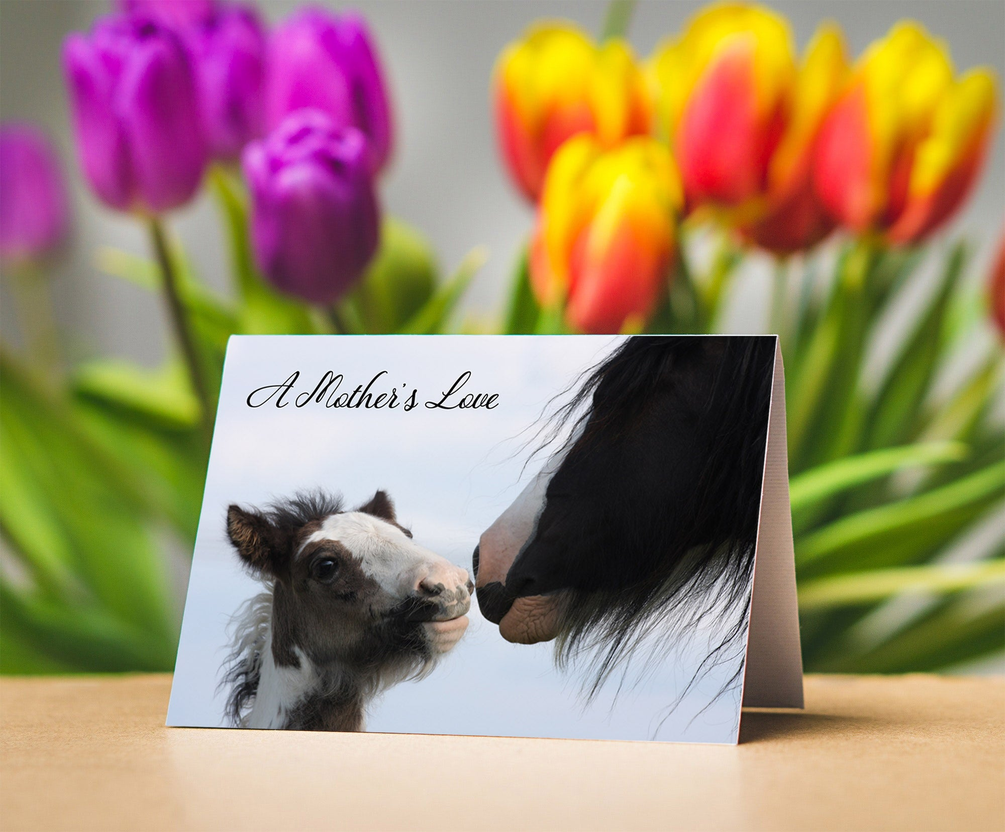 Mother's Day Card for Horse Lovers, Equestrian Cards Gypsy Vanner Lover