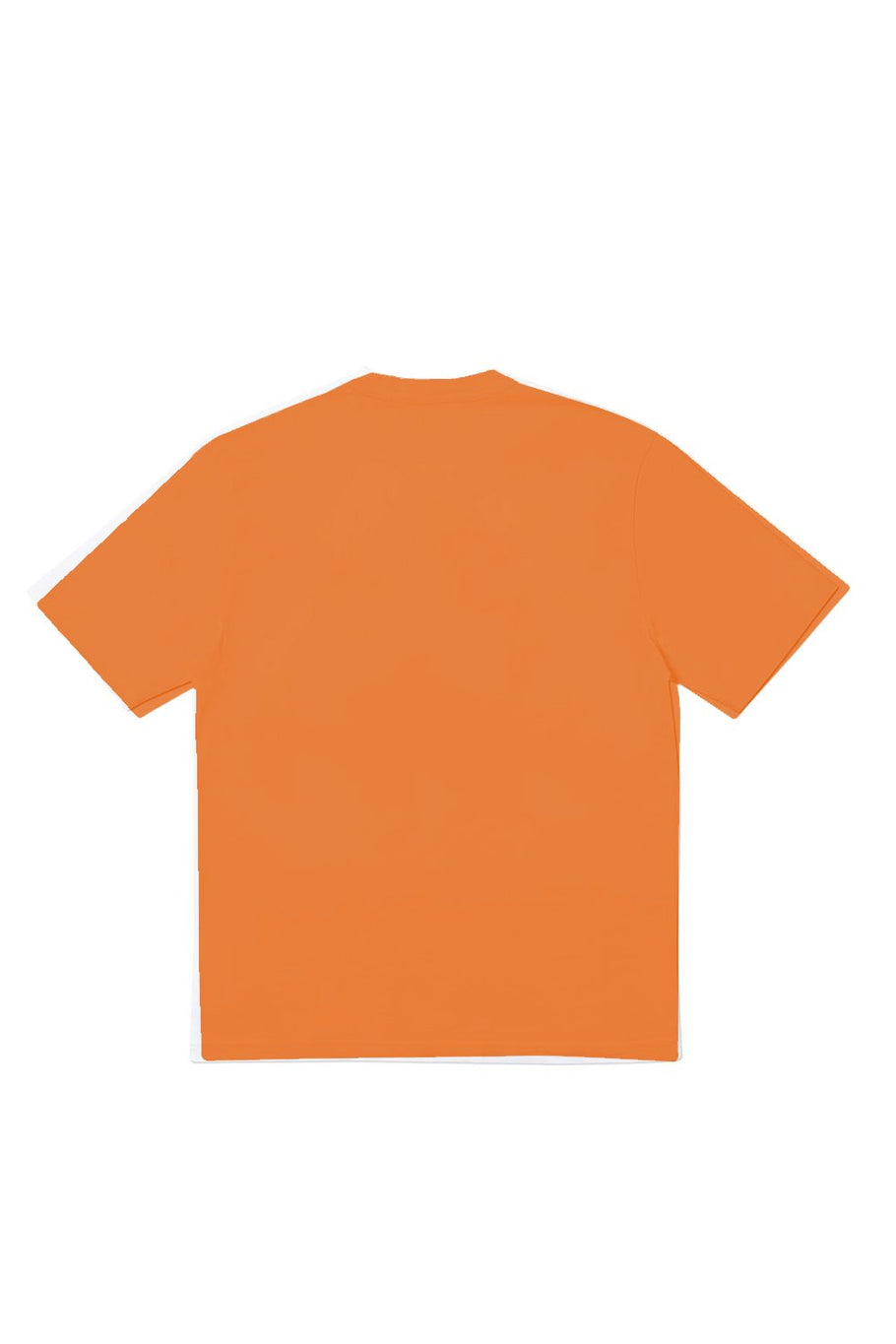 Camisetas Camiseta Orange Goosebumps